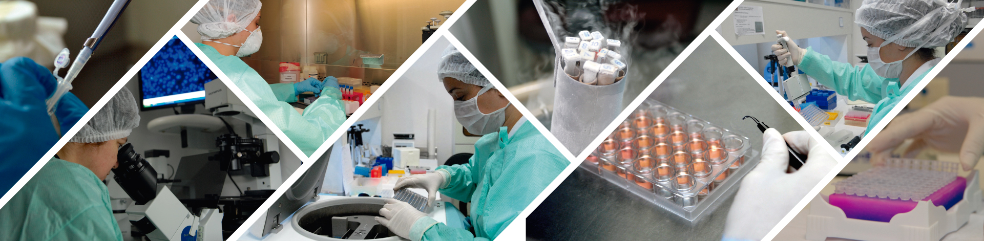 Curso de Biossegurança Laboratorial e Coleções Científicas